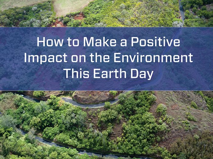How to Make a Positive Impact on the Environment This Earth Day